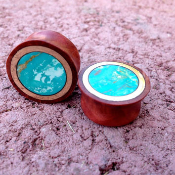 Turquoise, bronze and manzanita wood plugs--Item #105