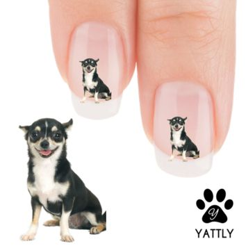 "Chihuahua ""Happy Happy Hours"" Nail Art Decals ( NOW 50% MORE FREE)"