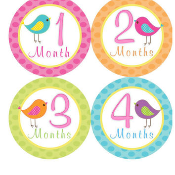 Baby Month Stickers Baby Girl Monthly Onesuit Stickers Pink Bird Monthly Stickers Onesuit Month Stickers Baby Shower Gift Photo Prop Bonnie