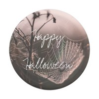 Halloween Cobweb with Dried Twigs Paper Plate