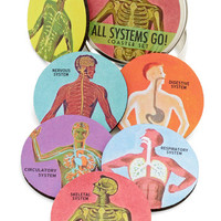 ModCloth Nifty Nerd Pour Anatomy a Drink Coaster Set