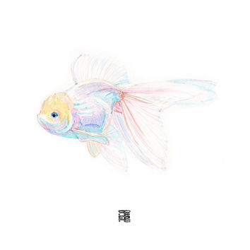 WATERCOLOR FISH japanese art print - Pink goldfish painting