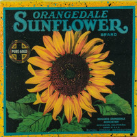 Orangedale Sun flower Brand - Vintage Citrus Crate Label - Handmade Recycled Tile Coaster
