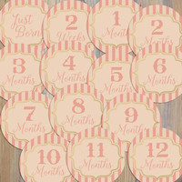 14 Pink Peach Gold Bold Stripes Vintage Tuscan Minimal Baby Girl Newborn Monthly Milestone Stickers
