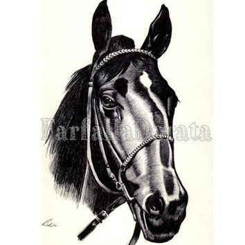 Horse portrait custom hand drawn in black pen, portrait of your horse or just for horse lovers, commissioned, personalized portrait