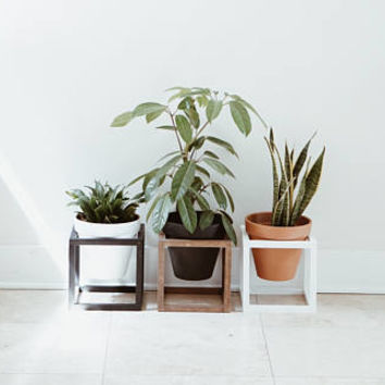 Set of Cube Planters / Cube Planter / Hex Planter /Floating Cubes