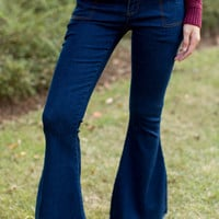 Some Days Lovin' Orion Denim High Waist Flares