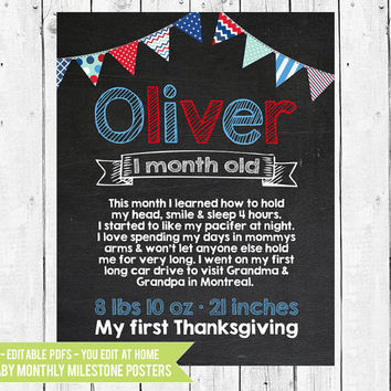 Baby's First Year Chalkboard Monthly Photo Prop - Month by Month - Monthly Milestone Chalkboard -12 PDFs You Edit In Adobe Reader or Acrobat