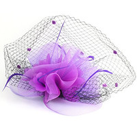 Elegant Women Net and Veil Fascinator Hair Clip Hat with Big Flower (Purple)