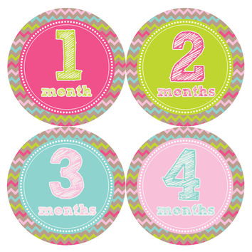 Baby Girl Monthly Baby Stickers Style #227