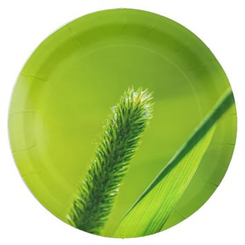 Green World Paper Plate