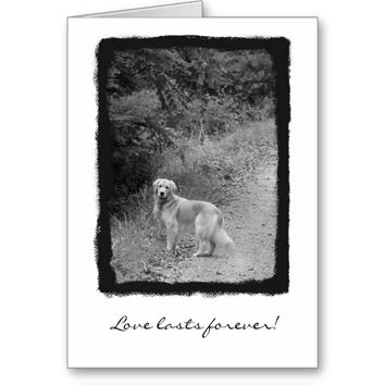 Pet Sympathy Greeting Card