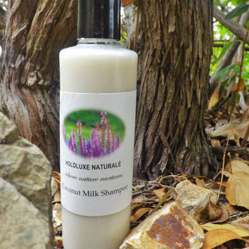 Coconut Milk Shampoo – Small Batch Handmade- Natural Hair Shampoo  – Handmade Moisturizing Shampoo  for Dry Hair