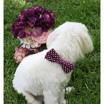 Raspberry Polka dots Dog Bow tie attach to collar, Raspberry wedding ideas