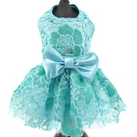 Aqua Lace and Satin Dog Harness Dress