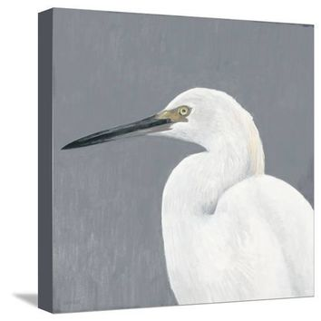Seabird Thoughts 1 Premium Giclee Print by Norman Wyatt Jr. at Art.com