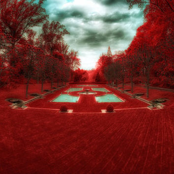Enchanted Forest: red landscape photography, autumn decor, whimsical decor, wonderland garden, red & robin's egg blue