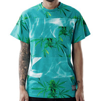 SUMMER HARVEST TEE IN TURQUOISE