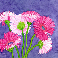 Gerber Daisies on Indigo, original floral watercolor, magenta flowers on indigo blue background, on paper