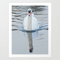 Reflective Swan Art Print by Karl Wilson Photography