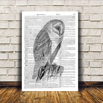 Owl poster Wall decor Dictionary print Bird art RTA69