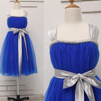 Royal Blue Tulle Flower Girl Dress TUTU Baby Girl Dress with Sash