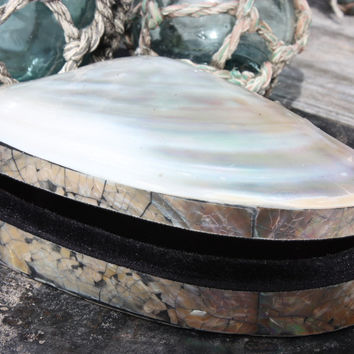 Seashell Keepsake Box XL - Silver - Coastal Decor