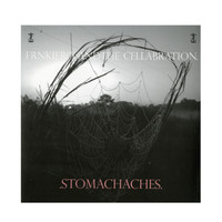 Frnkiero Andthe Cellabration - Stomachaches Vinyl LP Hot Topic Exclusive