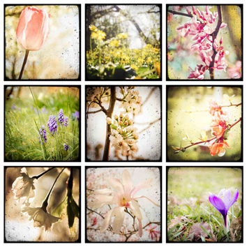 Spring Flowers- set of 9 PHOTOS, flower phototraphy, spring photography, gift set, spring decor, ttv photography, pastel wall art