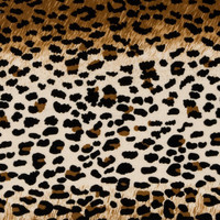 Halloween Spirit Collection - Leopard Costume Suede | Jo-Ann