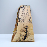 Lightning Strikes by Tried and True Woodwork, Live Edge Maple Lichtenberg Wood Burning, Unique Handmade Wall Art, OOAK, Home & Office Decor