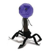 Giant Microbes T4 (T4-Bacteriophage) Plush Toy