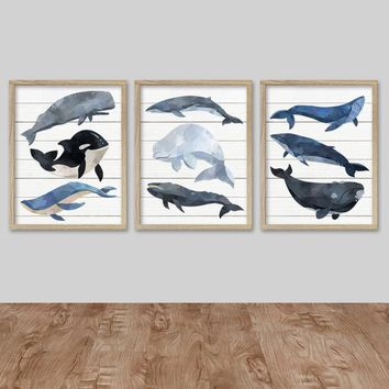Watercolor WHALE Wall Art, Nautical Watercolor WHALE Canvas or Prints, Whale Boy Nursery Decor, Nautical WHALE Bedroom Decor, Set of 3 Decor