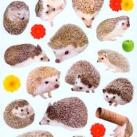kawaii hedgehog apple flower stickers by Mind Wave - Stickers for Boys - Sticker - Stationery