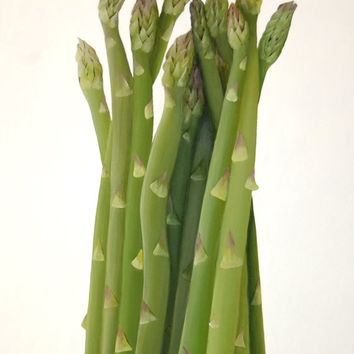 Asparagus Paper Sculpted Painting - Textured 3D Original Botanical Kitchen Wall Art
