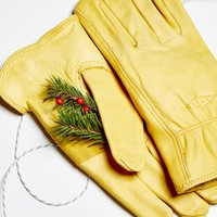 Free People Horse Brand Leather Glove