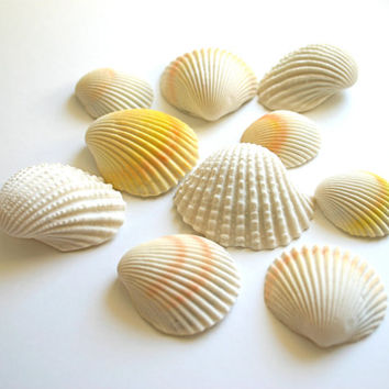 Chocolate Filled Candy Clam Shells -12 - As seen in Martha Stewart Wedding's (summer 2013) Top DIY Resources, under Edible Art.