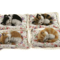 4x Cute Furry Snoozy Sleeping Kittens on Cushion (Cats) 25027 4 Assorted