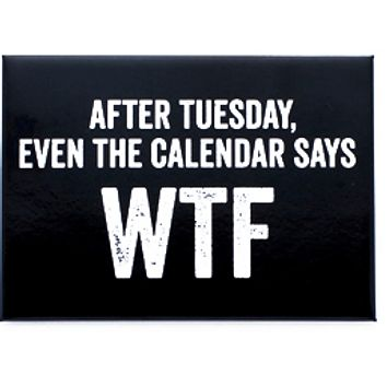 After Tuesday, Even the Calendar Say WTF Magnet in Black and White