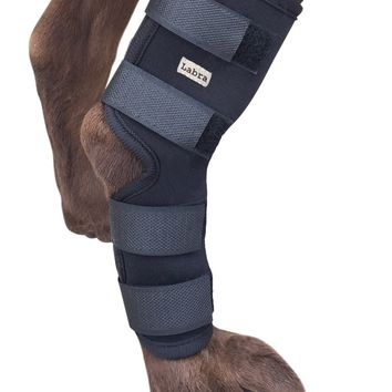 Labra Co. Dog Canine Rear Leg Hock Joint Wrap Protects Wounds as they Heal Compression Brace Heals and Prevents Injuries and Sprains Helps with Loss of Stability caused by Arthritis Large