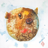 White spotted pufferfish - 6x6 Original Watercolor Painting - sea life