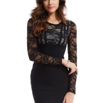 Plain Lace See-Through Women's Sheath Dress