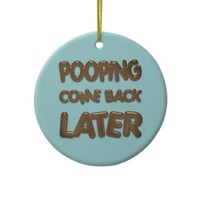 Bathroom Door Hanger Ornament from Zazzle.com