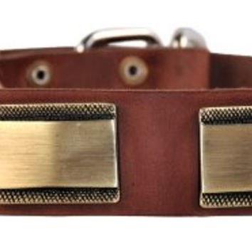 "Dean and Tyler ""BRASS STYLE"", Leather Dog Collar with Beautiful Brass Plates - Brown - Size 24-Inch by 1-1/2-Inch - Fits Neck 22-Inch to 26-Inch"
