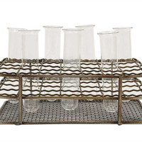 Metal Rack With 6 Glass Test Tubes