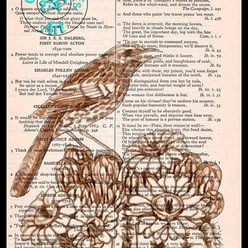 Arizona Cactus Wren State Bird Drawing Art Vintage Dictionary Page Art Print Upcycled