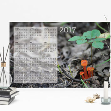 2017 12 Month Poster Calendar, Forest Mushroom Photo
