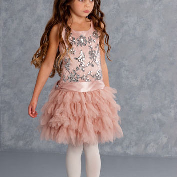 Biscotti Filigree Flutter Cocoa Pink Holiday Dress