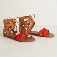 Bright Stripe Sandals by Dolce Vita