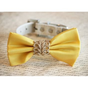 Yellow wedding dog bow tie collar, Country wedding, Beach Rustic wedding